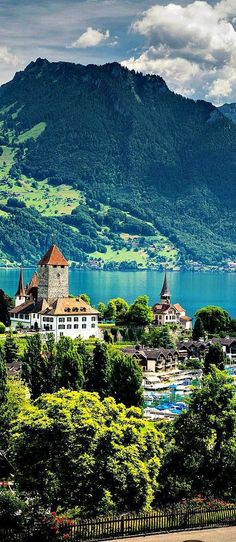 "travelandseetheworld: ""Travelling - Lake Thun, Switzerland Travel and see the world """