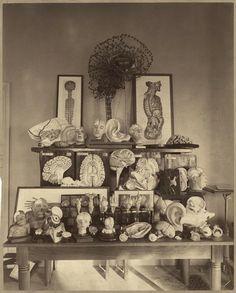 Harvard Psychological Laboratory Display. Circa 1892.