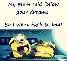 Funny Minions from Fort Worth (09:12:10 AM, Monday 15, August 2016 PDT) – 35…