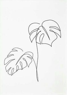 inktober2018 inktober - dia 18 - Uma Planta Leandro Guttemberg - Costela de Adão desenho - mostera plant drawn - MyKingList.com Tattoo Sketches, Tattoo Drawings, Drawing Sketches, Art Drawings, Drawings Of Plants, Line Art Tattoos, Inktober, Arte Linear, Neck Tatto