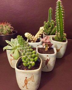 Reunião de cerâmicas recheadas de amor prontinhas para ir ao evento de amanhã: Av. São Luís 282 República a partir das 12h30. Te esperamos com muitas lindezas #oitominhocas #suculentas #cactus #ceramica #decoracao #plantinhasemcasa #maisverde #vemprocentro