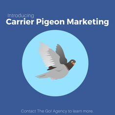 We're proud to announce our new service: Carrier Pigeon Marketing! Send thousands of real tweets to your customers daily with our feathered friends. April Fools! For our actual services, click here.