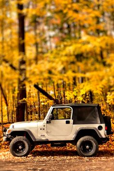 Jeep....Love off road