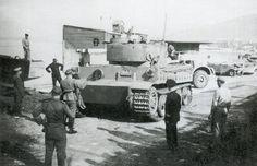 Image result for tiger 142 tunisia
