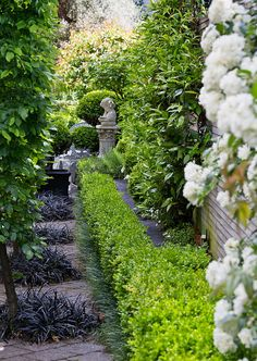 Diamonds of black mondo grass designed by HEDGE Garden Design & Nursery Formal Gardens, Unique Gardens, Small Gardens, Beautiful Gardens, Outdoor Gardens, Love Garden, Dream Garden, Shade Garden, Boxwood Garden