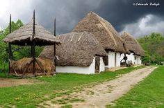 Szentendrei skanzen Global Village, Vernacular Architecture, European House, Homeland, Ecology, Budapest, Cottage, Country, House Styles