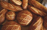 Berkeley Sourdough Bread Recipe   Exploratorium