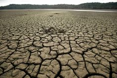 A new study on climate change shows that California's current drought-like…