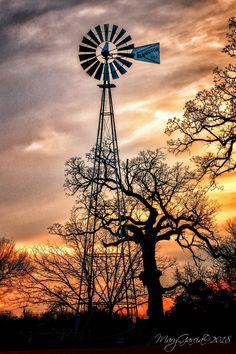 *🇺🇸 Windmill at sunset (Old Bedford School, Bedford, Texas) by Pamela McGee 🌅 Beautiful World, Beautiful Images, Sky Sunset, Texas Sunset, Farm Windmill, Old Windmills, Country Scenes, Old Barns, Le Moulin
