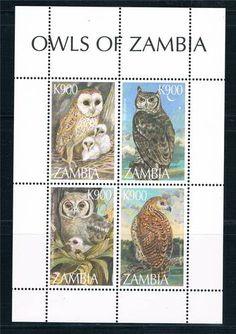 Zambia 1997 Owls OF Zambia MS SG 773 MNH   eBay