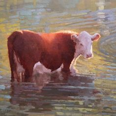 """A Cow in a Creek"" by Beth Marchant Oil Figure Painting, Still Life, Cow, Art Gallery, Paintings, Fine Art, Rustic, Landscape, Portrait"