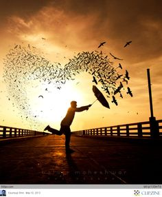 Umbrella | Beautiful Composition.