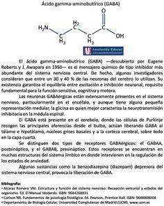Infografía Neurociencias: Ácido gamma-aminobutírico (GABA).   Asociación Educar