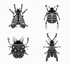 6 proyectos imprescindibles en Behance: #Insectos Tano-Veron Folk Art Flowers, Flower Art, Animal Drawings, Art Drawings, Insect Tattoo, Type Illustration, Scandinavian Folk Art, Zentangle Drawings, Insect Art