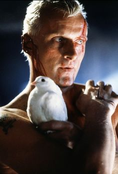 Blade Runner: Rutger Hauer as the Replicant with a soul.