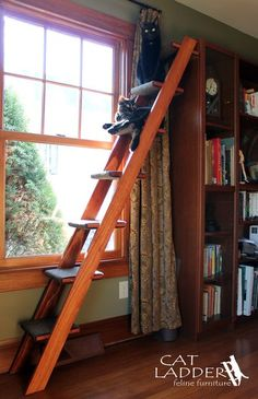 "7 step cat ladder - Tasteful design will complement your other furniture in your home. Sturdy construction of solid wood with your choice of warm finishes. Assembly is simple and fast. Carefully packaged to protect the finish for shipping. Carpet pads wrap around each step so your cat can easily climb up and bound at the edges so they won't unravel. Key Specs - Steps are 9""x 9"" - Stairs and landings made from maple or birch furniture grade plywood, rails made from white pine."