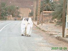 Algeria Oriental فڭيڭ    figuig
