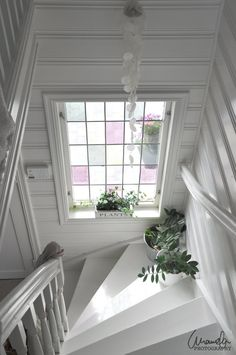 have a stained glass, or foggy indoor window (maybe even clear depending) above stairs into pantry to let natural light into pantry from back door window, then have clear glass door on pantry .or foggy depending. Staircase Architecture, Staircase Design, Style At Home, Cottage Staircase, Wallpaper Stairs, Forest Cottage, Stair Steps, Craftsman Bungalows, Windows And Doors