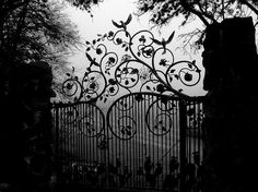Black iron gates....a toned down version but I am seriously showing this one to my Honey! For walk gates and doors as well!