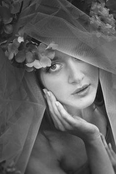 Mrs. Hydrangea portrait