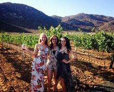 Zen Girl's Guide to Valle de Guadalupe - Mexico's Baja Wine Country