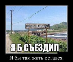 Васи.нет > Демотиваторы 31.12.2015 (30 фото)