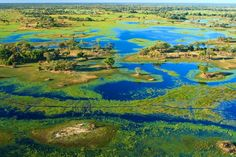 Aerial view of the Okavango Delta during its annual flood. Image by Kelly Cheng Travel Photography / Getty Images