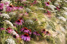 Rosanna Castrini photo from her garden