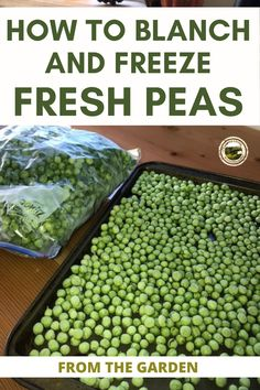 How to safely freeze fresh peas and other fresh vegetables from the garden. Blanch and freeze peas fast then store in deep freeze for eating later. Build your food storage by preserving fresh food. #preserve #freeze #blanch #vegetables #preserving #canning #food #foodsupply #foodstorage Canning Jars, Canning Recipes, How To Make Sauce, Deep Freeze, Smoked Fish, Fish And Meat, Emergency Food, Pressure Canning, Dehydrated Food