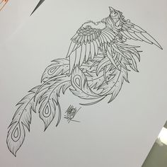 Sketch for paradise bird Tattoo.