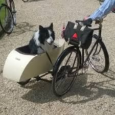 Bicycle Sidecar, Baby Strollers, Children, Baby Prams, Young Children, Boys, Kids, Prams, Strollers