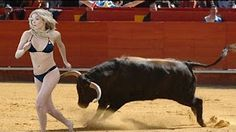 Best funny videos | Funny bullfighting festival in Portugal | Funny crazy bull attacks people #8 - YouTube