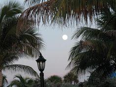 full moon over Hollywood Beach