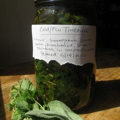 How to Make A Cold and Flu Tincture Using Homegrown Herbs ~ A Recipe