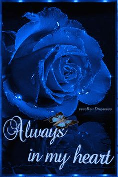 I am back my dear sis Bella Donna ,, i m sorry my account was hacked ,, You always in my mind and in my prayer ,, hope you are better and speedy recovery ,, miss you ,, With love ~~ Vivi