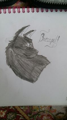 Breezepelt.#30doodles. Repin with credit. Drawn by Blaze Runner ( Alphaheart ).