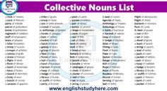 Male and Female Animals Name List | English Study Here Female Pet Names, Male And Female Animals, Idiom Examples, Animals Name List, Idioms And Their Meanings, Examples Of Adjectives, Uncountable Nouns, Collective Nouns, Fox Dog
