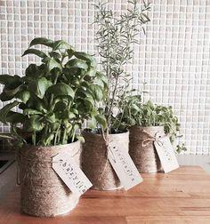 """Mini triki """"zrób to sama"""" #3 - osłonka na zioła z puszki po brzoskwiniach. Amanda, Bridal Shower, Tutorials, Garden, Plants, Diy, Shower Party, Garten, Bricolage"""