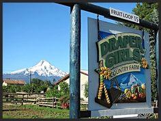 Draper Girls Country Farm