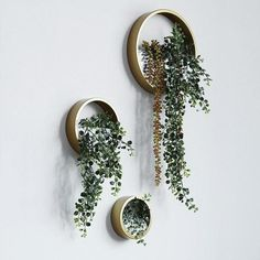 Creative Wall Hanging Metal Iron Planter Round Vase for Home Garden Living Room Decoration Crafts Artificial Flower Holder Plant Pots Metal Wall Planters, Wall Hanging Plants Indoor, Diy Wall Planter, Concrete Planters, Motif Art Deco, Hanging Terrarium, Wall Terrarium, Terrarium Ideas, Walled Garden