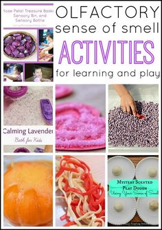 Sensory play ideas for the olfactory sense. Sense of smell activities for kids