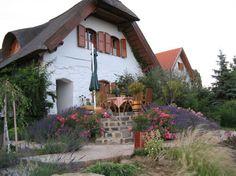 Vakantiehuis De Wijnrank Balatonmeer in Hegymagas, Balatonmeer, Hongarije.  http://www.micazu.nl/vakantiehuis/hongarije/balatonmeer/hegymagas/de-wijnrank-balatonmeer-15343/