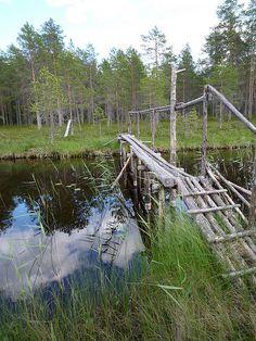 High tech bridge between lakes Aisus and Luulampi in Juuka, Northern Carelia, Finland.