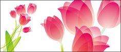 tulip special material