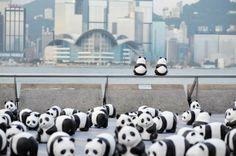 星光大道 1600 熊貓 快閃 熊貓遊 香港遊 HONG KONG 1600 pandas hk touring route PMQ 元創方 AllRightsReserved WWF - Yahoo 旅遊 with GOtrip - 最強旅遊互動分享平台!