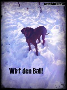 Ich bin soweit. Kannst den Ball ruhig werfen...