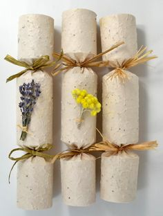 L'occtaine crackers. Banana seed paper paper crackers, that can be planted. Seed Paper, Paper Paper, Banana Seeds, Winter Sky, Wood Turning, Flower Decorations, Diy Beauty, Dried Flowers, Crackers