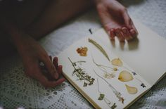 mccimperatriz      sem título by *Nishe on Flickr.  Making an herbarium could be a good idea?  via plakkikanteletar:
