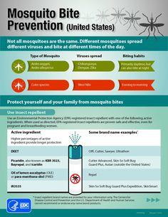 Zika Virus Update | Mosquito Bite Prevention This Summer by Survival Life at http://survivallife.com/zika-virus-update/