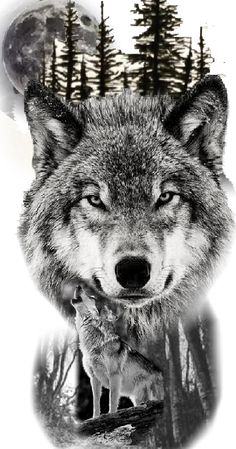 Wolf Sleeve, Wolf Tattoo Sleeve, Lion Tattoo, Wolf Photos, Wolf Pictures, Wolf Tattoos Men, Tattoos For Guys, Wolf With Red Eyes, Gear Tattoo